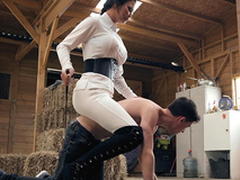 Brazzers HD: Horsing Near With Be passed on Stable Boy Jasmine Jae and Jordi El Niño Polla